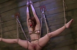 Bound sub strapon fucked